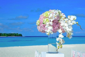 aluisi-fiori-matrimonio-salento-13