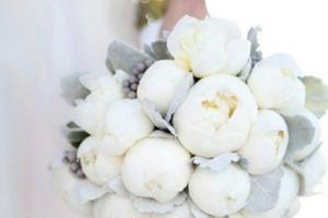 aluisi-fiori-matrimonio-salento-26